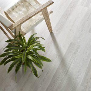 Basilica Century Pine | Flooring By Design