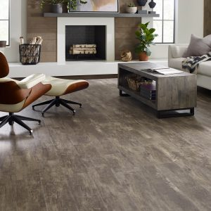Paramount Plus Jade Oak Family room | Flooring By Design