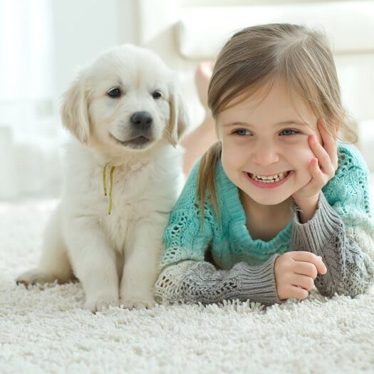Kid and dog on carpet | Flooring By Design