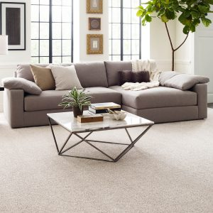 Perfect carpet in living rooms | Flooring By Design