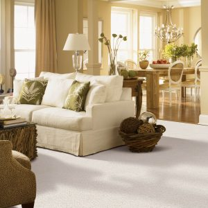 Gentle Approach of carpet | Flooring By Design
