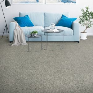 Placid Reflection carpet | Flooring By Design