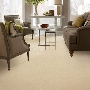 Carpet in living room | Flooring By Design