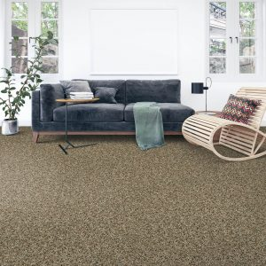 Soft intrigue carpet floor | Flooring By Design