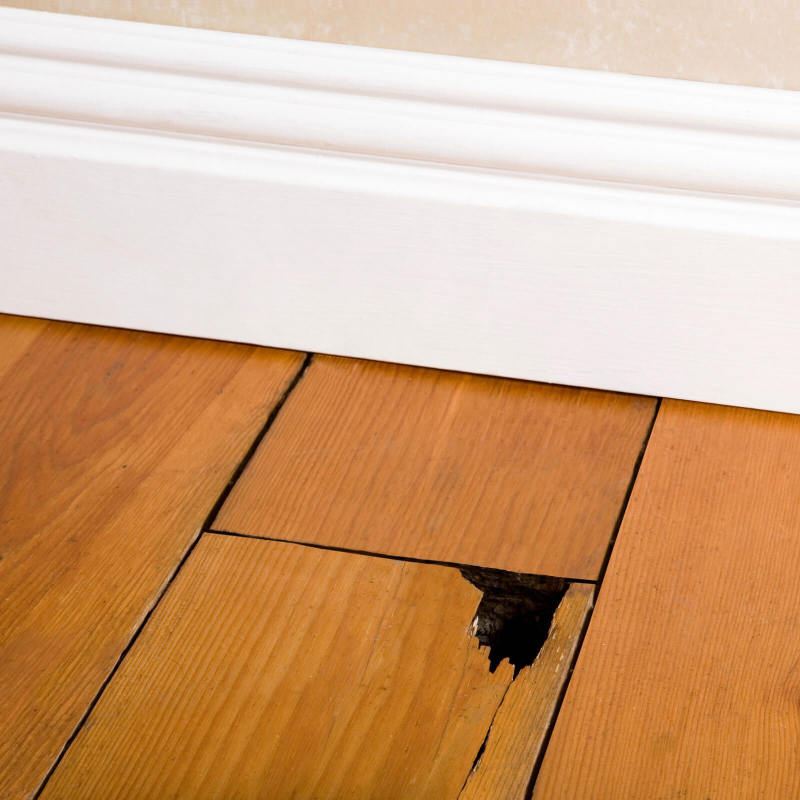 Hardwood Restoration Durham, NC | Flooring By Design