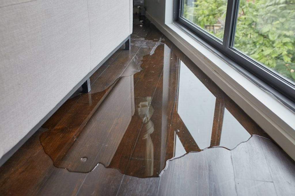 How to Deal with Flood Damage